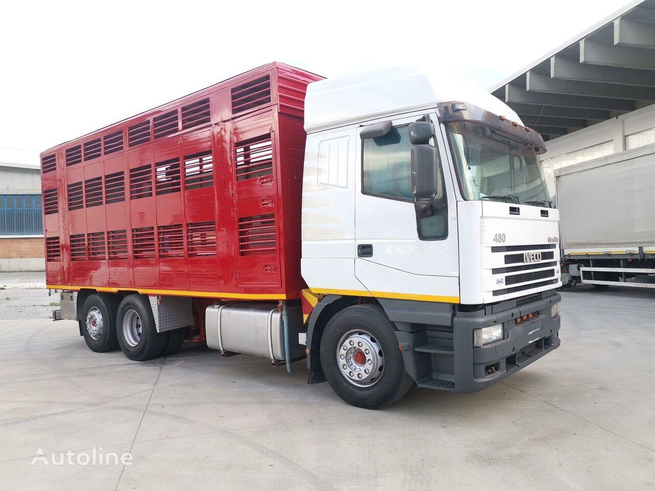 IVECO 240E48 CURSOR ANIMALI VIVI  livestock truck