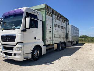 PEZZAIOLI livestock truck
